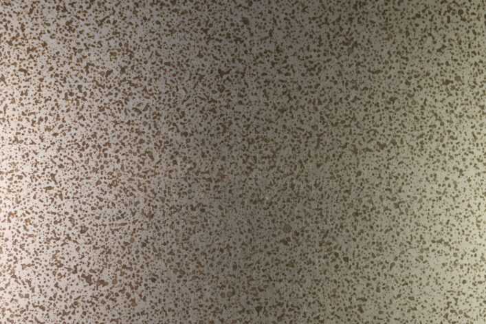 Speckled Stainless