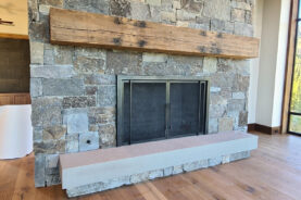 Ascent Fireplace Doors