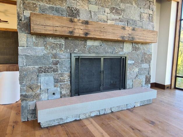 Ascent Fireplace Doors